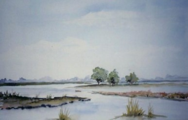 Lakes in Drenthe 2