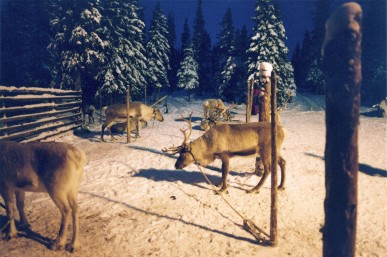"January 2005. Finland, near Kuusamo. Raindeer Farm in ""winter daylight\"" close to the polar circle."