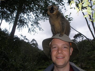 Lemur sitting on Rob's hat on the Lemur island of the Vakona forest lodge